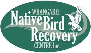 Whangarei Native Bird Recovery Centre, Whangarei